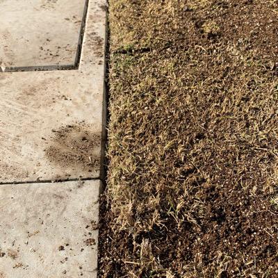 芝生 目土入れ